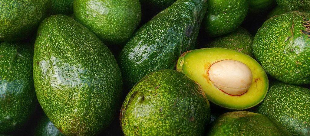 avocado een natuurlijk ingrediënt - Rio Rosa Mosqueta
