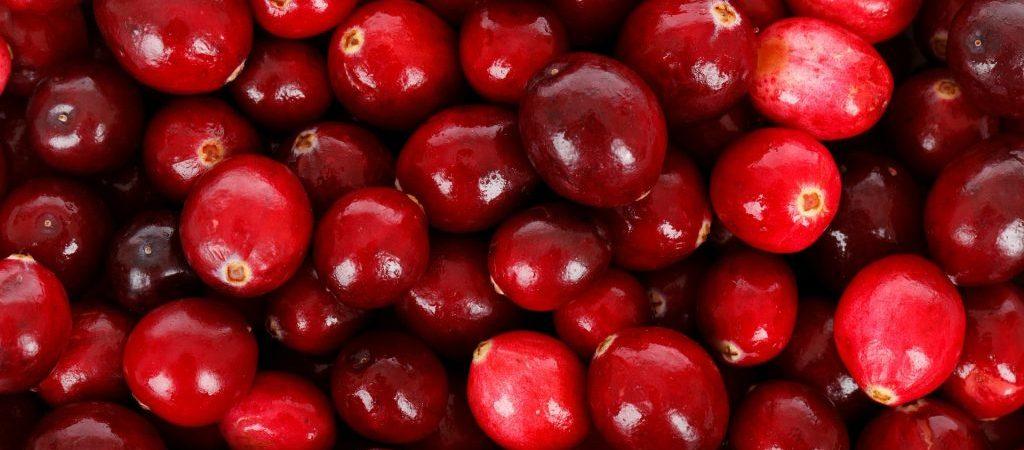 Cranberry olie natuurlijk ingrediënt | Rio Rosa Mosqueta